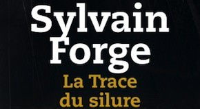 trace-du-silure-forge
