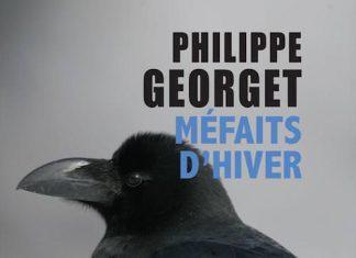 mefaits d hiver - Philippe GEORGET