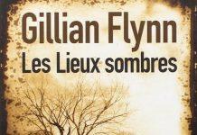 gillian flynn-les-lieux-sombres