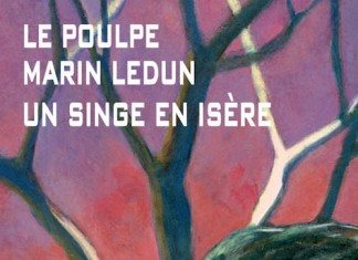 Un singe en isere - Marin Ledun