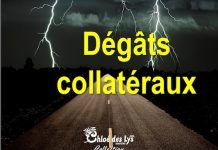 christine brunet-degats-collateraux