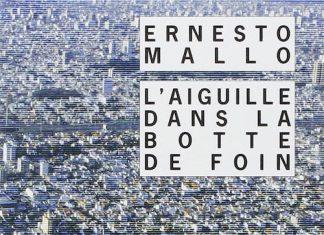L aiguille dans la botte de foin - Ernesto mallo