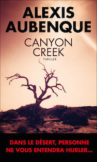 canyon creek - Alexis AUBENQUE