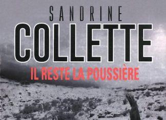 Il reste la poussiere - Sandrine COLLETTE