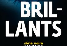 Brillants - marcus sakey