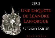 sylvain larue-une-enquete-de-leandre-lafforgue