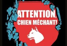 Bastien VIVES - Attention chien mechant