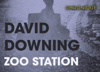 David DOWNING : Zoo Station