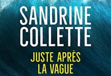 Sandrine COLLETTE - Juste apres la vague -