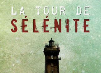 Arnaud CODEVILLE - La tour de selenite