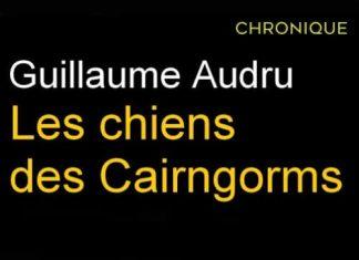 Guillaume AUDRU : Les chiens des Cairngorms