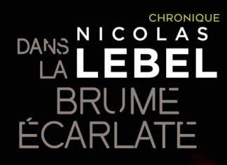 Nicolas LEBEL : Dans la brume écarlate