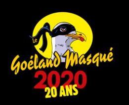 Goëland Masqué
