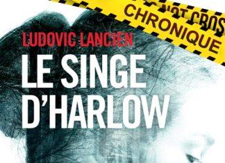 Ludovic LANCIEN - Le singe Harlow