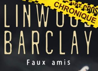 Linwood BARCLAY-Promise Falls - Faux amis