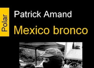 Patrick AMAND : Mexico bronco