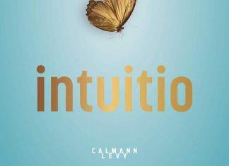 Laurent GOUNELLE : Intuitio